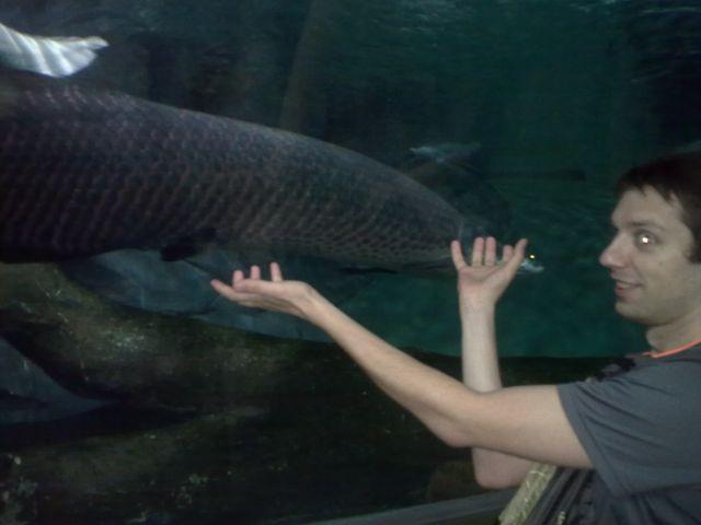 доисторическая рыбина.