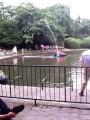 водная забава - врежься в фонтан и брызгай им других