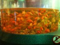 вот так рыбы легко живут в очищенной воде