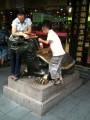 драконочерепах
