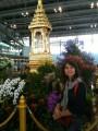 Вот так встречает Бангкок
