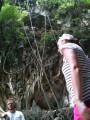 стопяцотлетние лианы свисают с высока