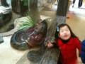 китайские дети аж пищат от радости