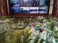 Макет маршрутов в желтых горах