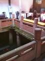 В домике прям в центре пруд с красными рыбами
