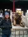 Золотые львы