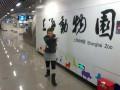 Вот так вот пишется Шанхайский Зоопарк